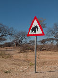 Beware of elephants Royalty Free Stock Photography