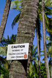 Beware of falling coconuts with a smile. Sign warning of falling coconuts and fronds on Big Island, Hawaii Stock Image