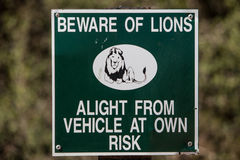 Beware of Lions Stock Images