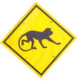 Beware of monkey sign Royalty Free Stock Photography