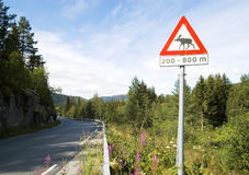 Beware of moose. A Norwegian sign saying 'beware of moose', a road leading in the mountains with some trees Royalty Free Stock Photos