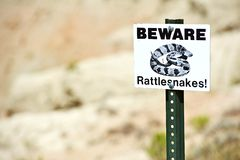 Beware Rattlesnakes Stock Images