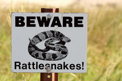 Beware Rattlesnakes Sign. A sign that reads Beware Rattlesnakes! and shows and image of a coiled up snake stock image