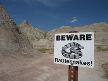 Beware of Rattlesnakes Royalty Free Stock Images