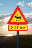 Beware of reindeers Royalty Free Stock Image