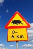 Beware of wild boar Royalty Free Stock Photo