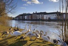 Bewdley, England Stock Photos