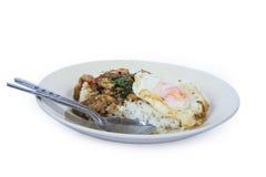 Beweeg gebraden kip met heilige basilicum en rijst Stock Foto