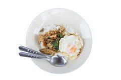 Beweeg gebraden kip met heilige basilicum en rijst Stock Fotografie