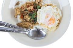 Beweeg gebraden kip met heilige basilicum en rijst Stock Foto's