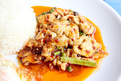 Beweeg gebraden kruidige kip Thais kruidig kruidvoedsel Royalty-vrije Stock Afbeeldingen
