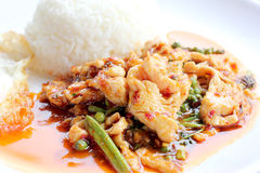 Beweeg gebraden kruidige kip Thais kruidig kruidvoedsel Royalty-vrije Stock Fotografie