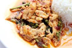 Beweeg gebraden kruidige kip Thais kruidig kruidvoedsel stock foto