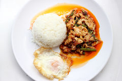 Beweeg gebraden kruidige kip Thais kruidig kruidvoedsel Royalty-vrije Stock Afbeelding