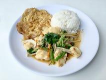 Beweeg groenten met Tofu in Chinese stijl met jussaus en Thaise stijlomelet met rijst in witte plaat op achtergrond Vegetari stock fotografie