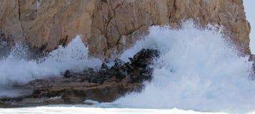 Bewegen Sie auf der Seelöwenkolonie vorbei brechen an den Ländern beenden in Cabo San Lucas Baja Mexiko wellenartig Lizenzfreie Stockbilder