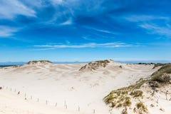 Bewegend duinenpark dichtbij Oostzee in Leba, Polen Stock Foto's