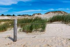 Bewegend duinenpark dichtbij Oostzee in Leba, Polen Royalty-vrije Stock Foto's