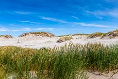 Bewegend duinenpark dichtbij Oostzee in Leba, Polen Royalty-vrije Stock Afbeeldingen