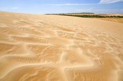 Bewegend Zand Stock Foto