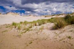 Bewegende duinen bij de Oostzee stock foto's
