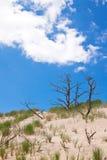 Bewegende duinen bij de Oostzee stock foto