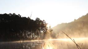 Bewegende mist dichtbij meer die in de ochtend met zonlicht kamperen stock footage