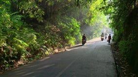 Bewegende motorrijders op zonnige groene straat in Hanoi stock video