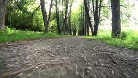 Beweging van de camera laag aan het voetpad stock video