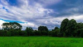 Beweging van wolken over Wyken-Croft de tijdspanne van de parktijd Hoog - kwaliteitslengte stock video