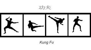 Bewegingen 2 van de kungfu Stock Foto's