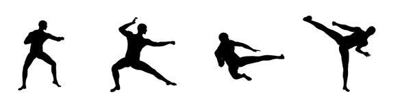 Bewegingen 4 van de kungfu Stock Fotografie