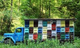Bewegliche Bienen Stockbild
