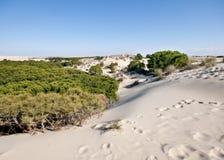 Bewegliche Sanddünen, Doñana, Spanien Lizenzfreie Stockbilder