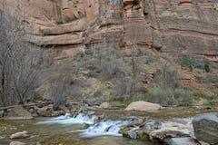 Beweglicher Fluss in der roten Felsenschlucht, Zion National Park, Utah Lizenzfreie Stockfotografie