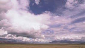 Beweglicher naher Holzwald und Gebirgstal mit Regen und Wolken Bewegung entlang der Steppe, mit Bergen in stock video footage