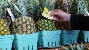 Bewegung der Frauenhand Ananas am Supermarkt vorwählend stock footage