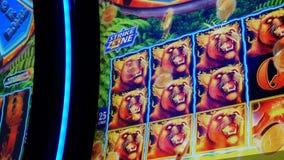 Bewegung von den Leuten, die Spielautomaten innerhalb des Kasinos, Fokus auf Schirm spielen stock footage