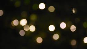 Bewegungsbewegung von buntem Bokeh von geführtem im Garten in der Nacht lingthing stock footage