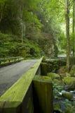 Bewegungsnatur-Spur, großes rauchiges Mtns NP, TN Lizenzfreies Stockbild