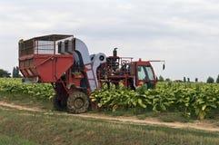Bewerk tractor Royalty-vrije Stock Foto