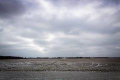Bewerkte landbouwbedrijfgebieden in de winter met lichte sneeuw en stormachtige wolken in Illinois royalty-vrije stock fotografie