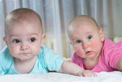 Bewildered babies Royalty Free Stock Images