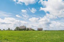Bewirtschaften Sie auf dem grünen Gras mit blauem Himmel und Wolken Stockfotos
