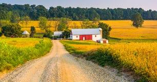 Bewirtschaften Sie entlang einem Schotterweg in ländlichem York County, Pennsylvania stockfotografie