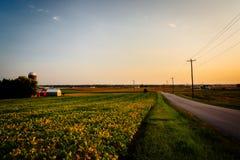 Bewirtschaften Sie entlang einer Landstraße in ländlichem York County, Pennsylvania stockfotos