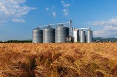 Bewirtschaften Sie, Gerstenfeld mit Getreidespeichern für die Landwirtschaft Stockfotos