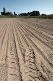 Bewirtschaften Sie Getreidefeld mit den Spuren, die für das Pflanzen vorbereitet werden stockfotos