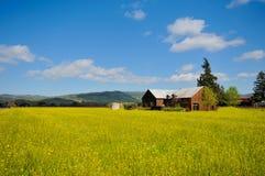 Bewirtschaften Sie Haus auf einem Gebiet der gelben Blumen lizenzfreies stockfoto