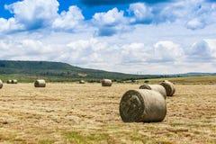 Bewirtschaften Sie Landschaft Lizenzfreie Stockfotos